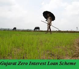 gujarat zero interest loan scheme 2021